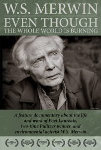 DVD-Cover-Graphic
